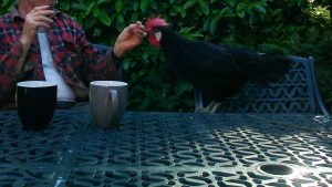 Matilda and Ronnie sharing lunch - Copy