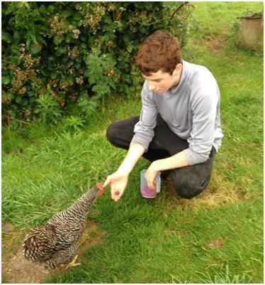 Robert, one of Eden's past volunteers, feeding raspberries to Clare.