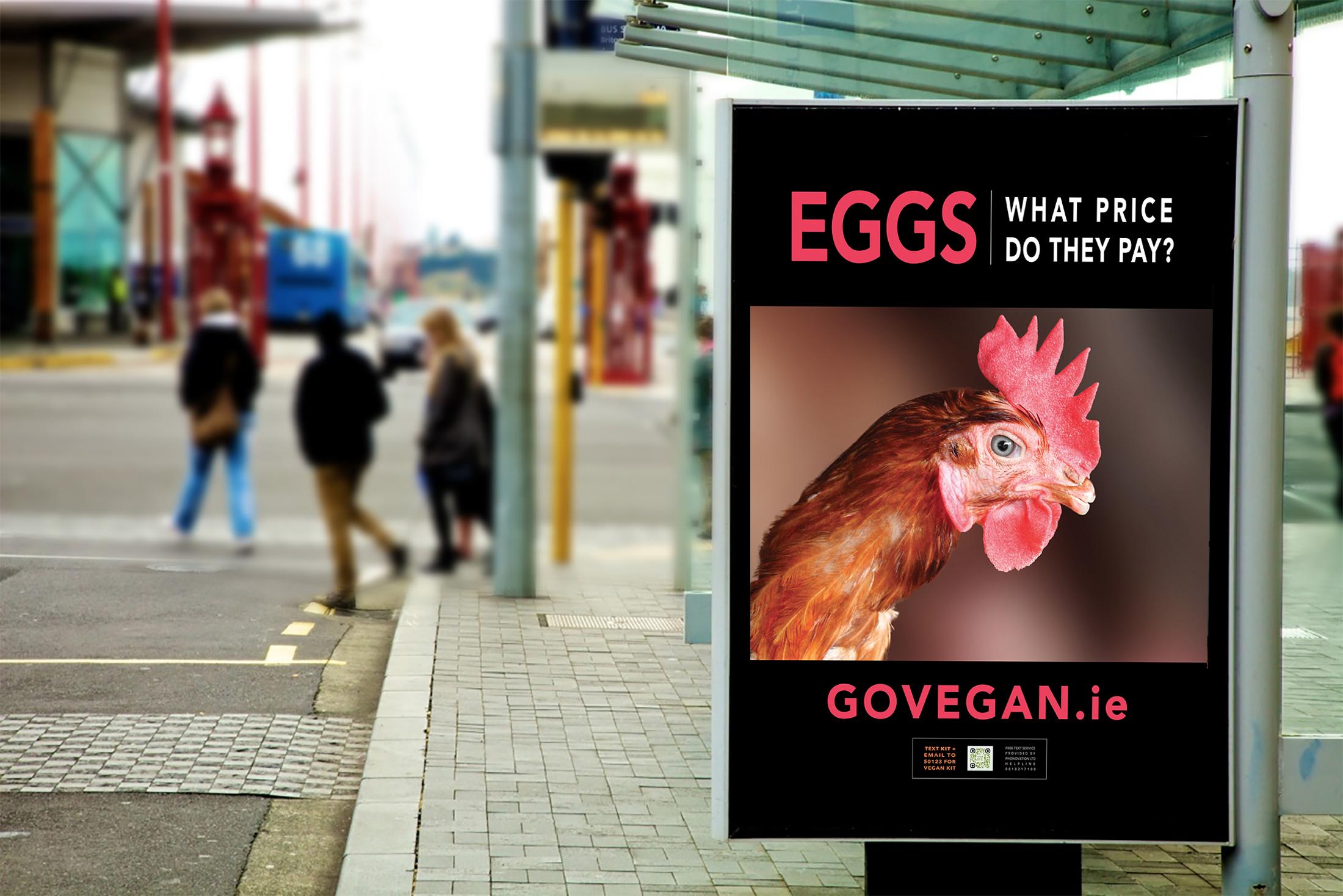 Bus-Eggs