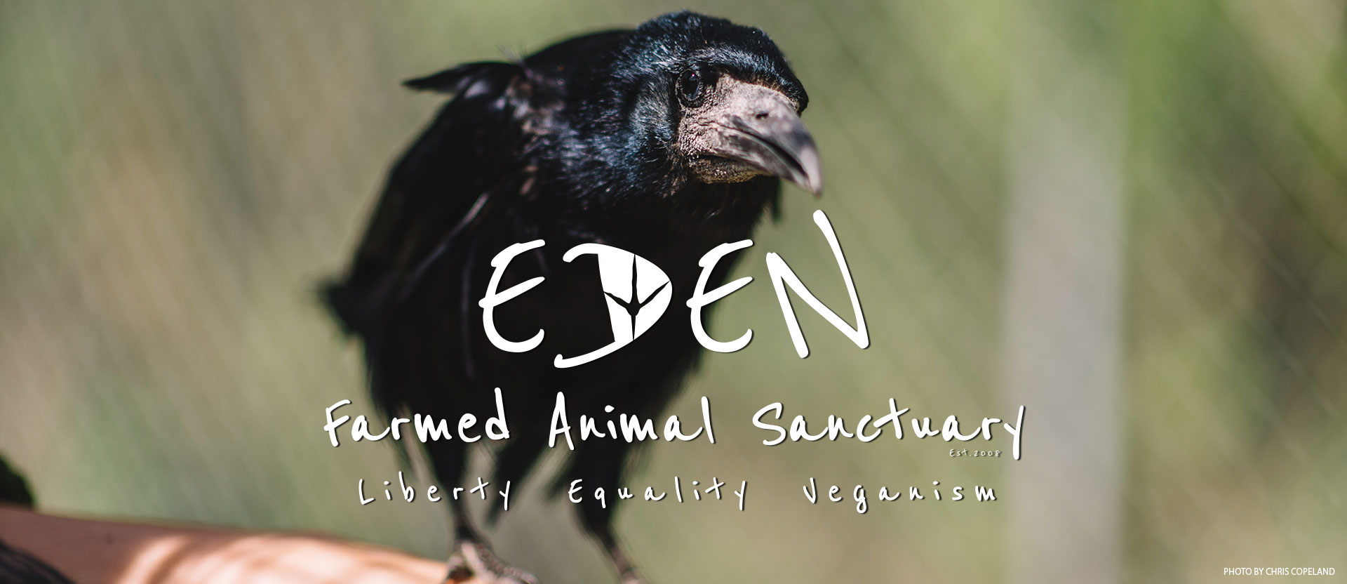 Eden Farmed Animal Sanctuary - Liberty, Equality, Vaganism